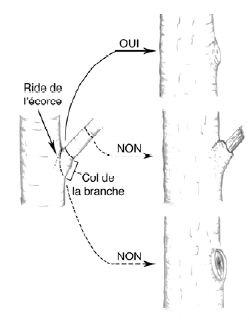 Angle de coupe bourrelet recouvrement